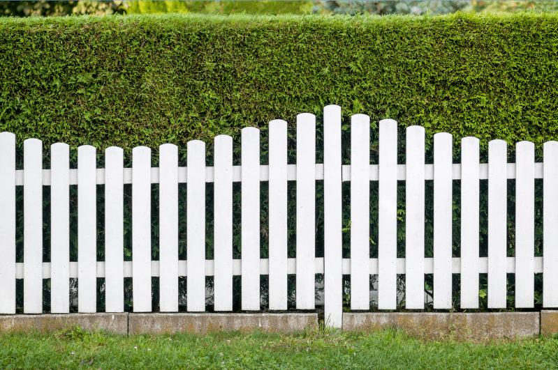 White Picket Fence Toronto1